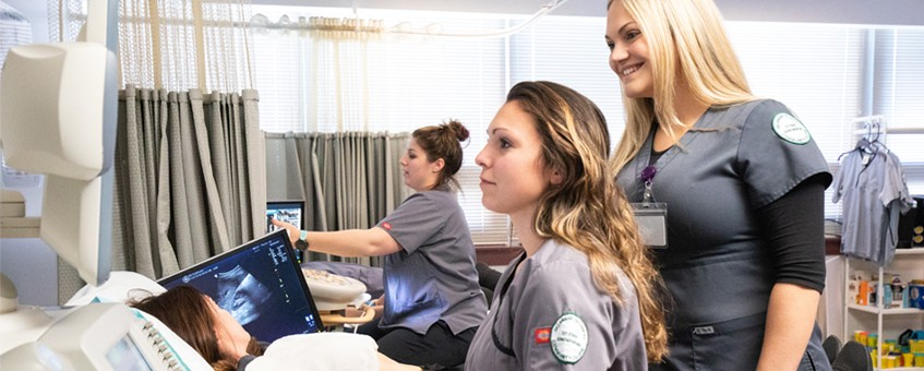 Faculty and students review sonography images in classroom lab
