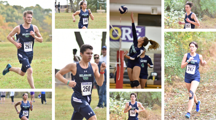 A collage of the Fall All Region athletes