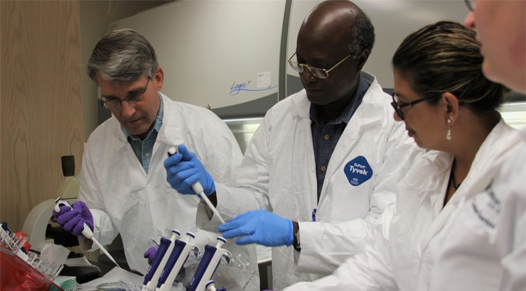 Four people in white lab coats working on tissue cultures