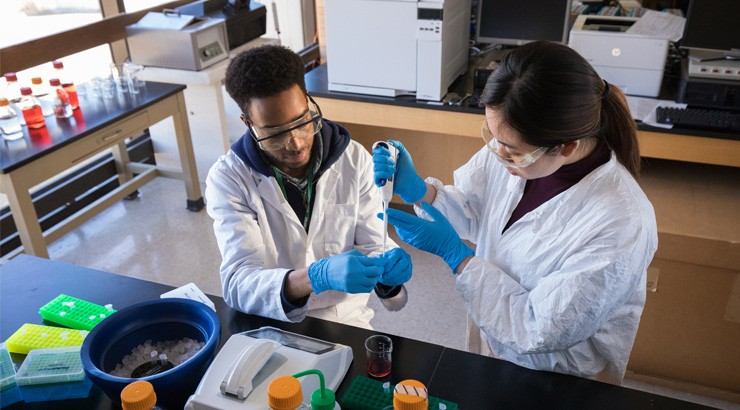 Students in gene editing lab