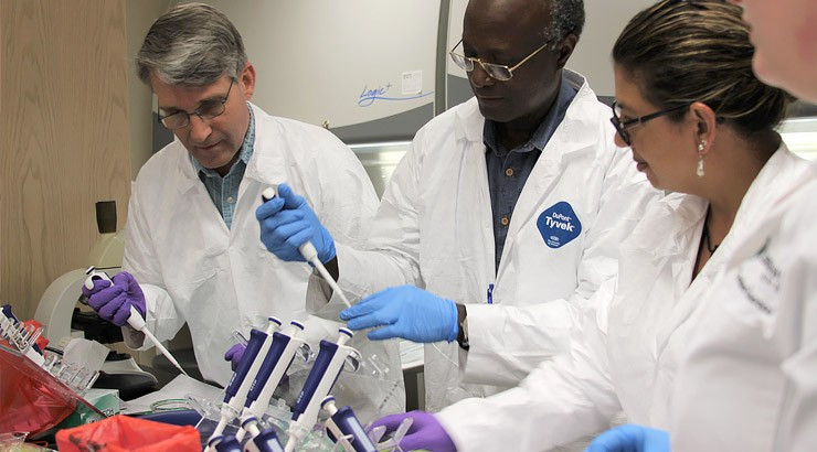 Faculty members work in a gene editing lab.