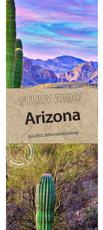 Study Away Arizona