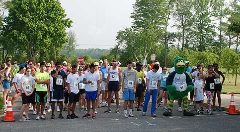 Group of runners at starting line preparing to run
