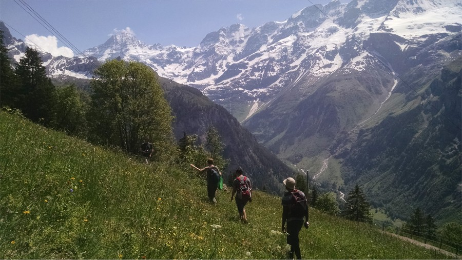 Three energy students walking in a field with mountains behind them