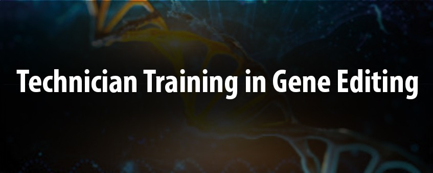 Technician Training in Gene Editing