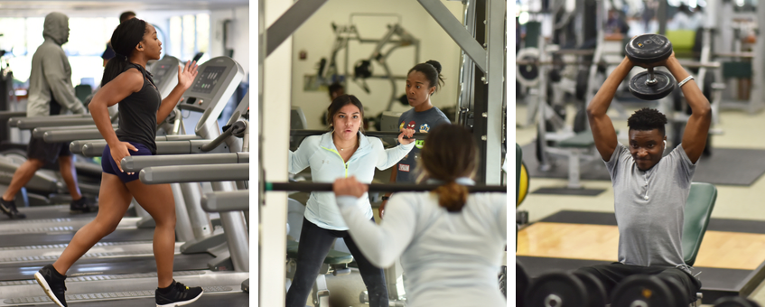 A collage of three scenes in the Delaware Tech wellness center: a woman on a treadmill, another woman doing weighted squat exercises, and a man raising a barbell above his head with both hands