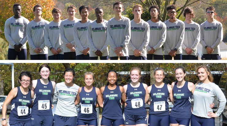 Delaware Tech's men's and women's cross country teams