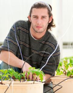 Male student in greenhouse