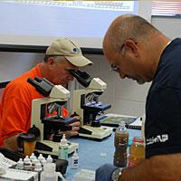Workforce Development and Community Education students using microscopes